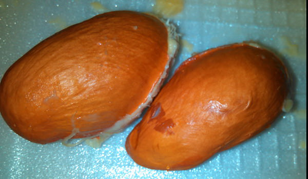 Дуриан фрукт Таиланд