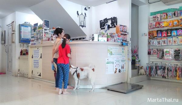 животные в паттайе, ветеринарная клиника