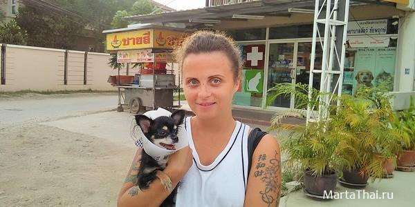 Животные в Паттайе