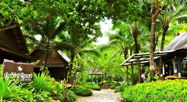 лучшие отели Паттайи с животными