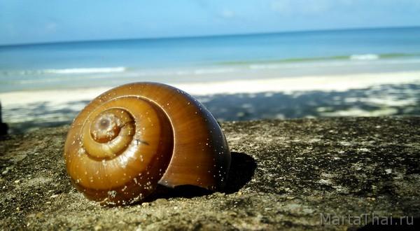 sokha_beach_sihanoukville_13